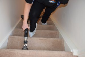 carpet cleaning stain removal home domestic service swindon
