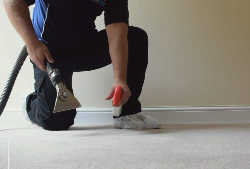 Our Step by Step Carpet Cleaning Process [VIDEO]