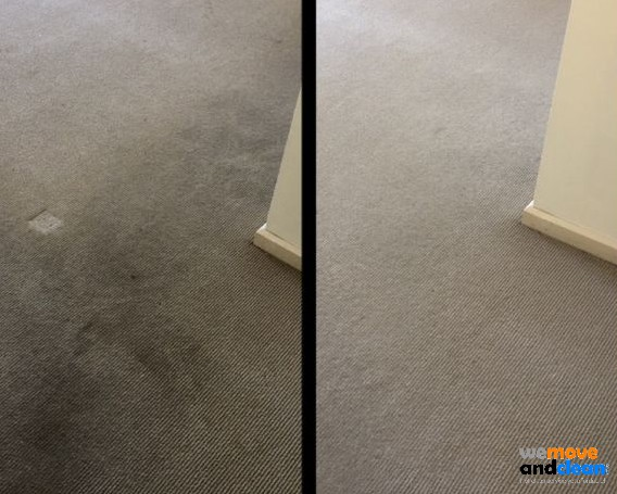 carpet-cleaning-before-after-01